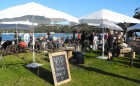 signature-blogs-gourmet-mudgee-wine-&-food-festival-balmoral-beach-lead